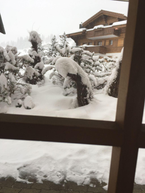 https://cdn.wintersport.nl/forum/23/39f5da97990fed49e1da8518...