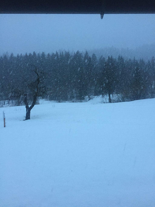 https://cdn.wintersport.nl/forum/23/93865ab149ec888c7a4bf1d2...