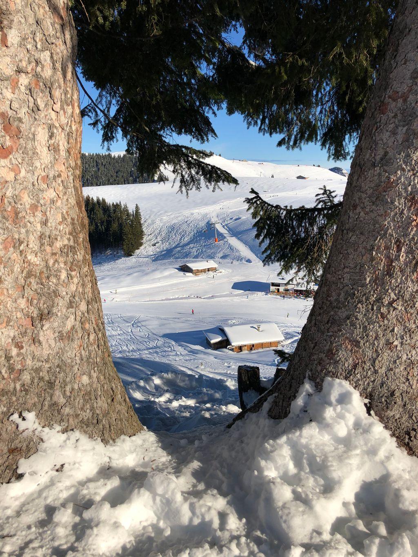 https://cdn.wintersport.nl/forum/25/4e9014e2291bc3fb18b5db7d...