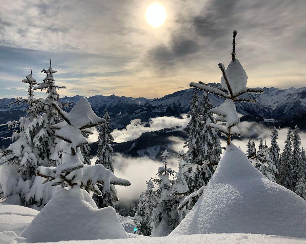 https://cdn.wintersport.nl/forum/26/4e4d03f390f7c05511701eee...