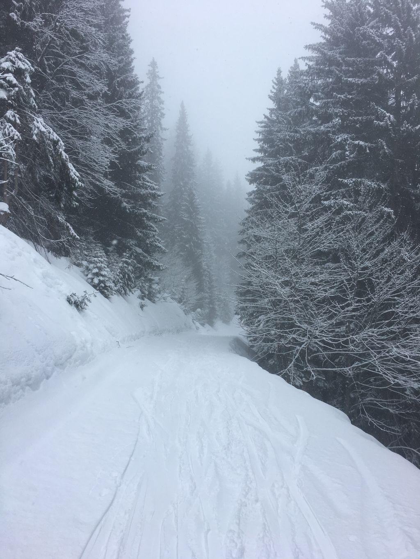 https://cdn.wintersport.nl/forum/26/db4524a6ec0976c67d92d386...