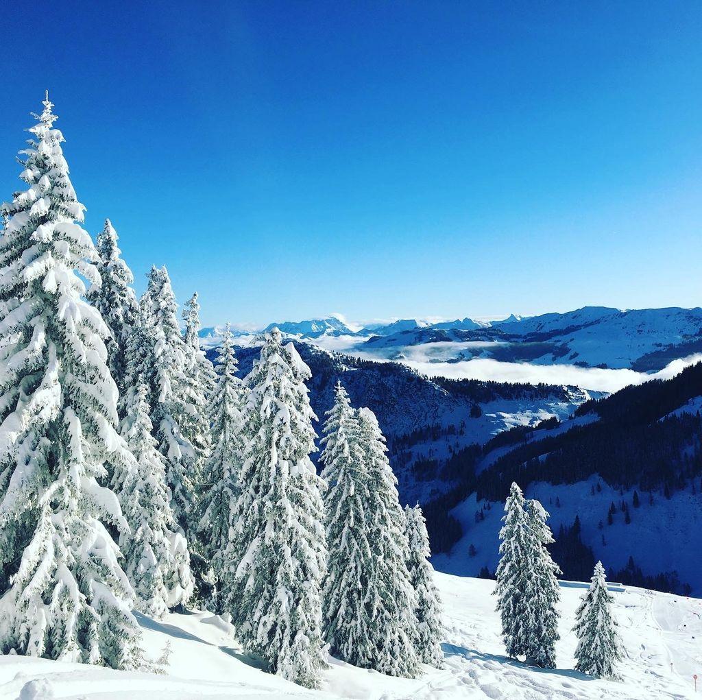 https://cdn.wintersport.nl/forum/27/b1c4462f3eea211800777048...