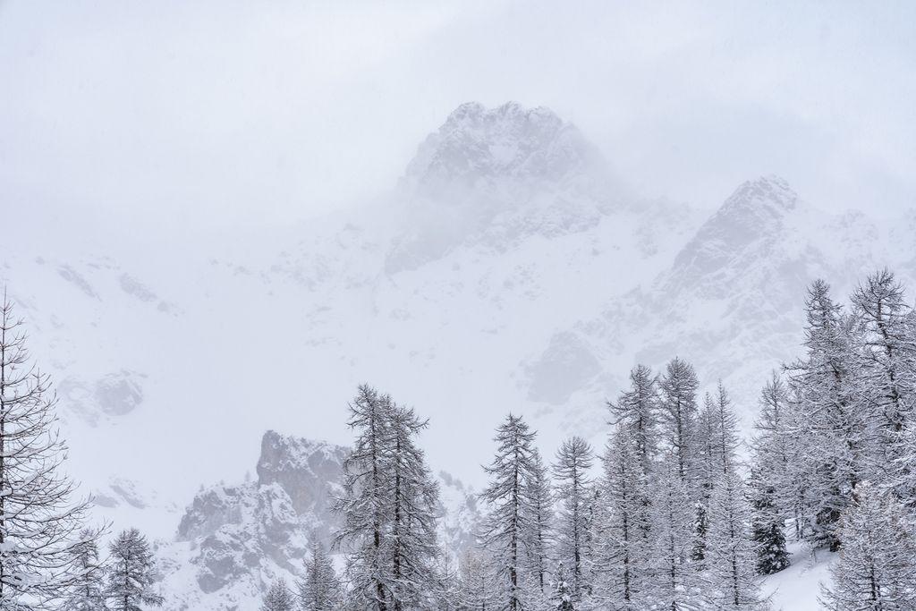Besneeuwd landschap sneeuw