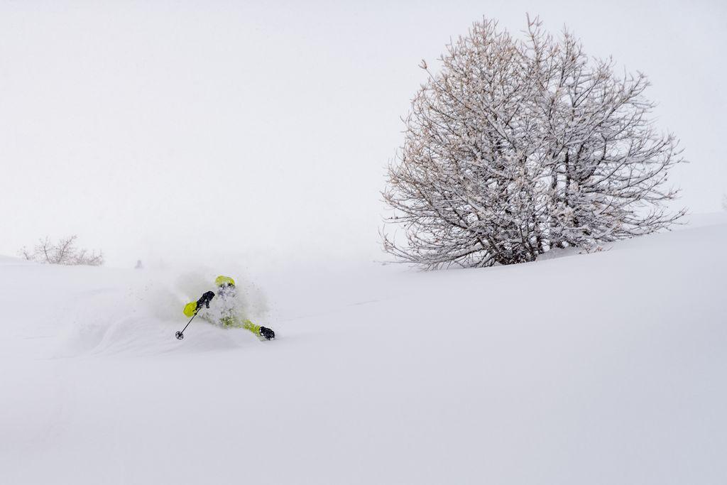 Freeride skien